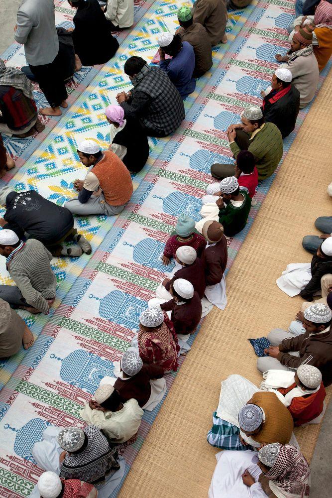 momenta-projectindia2012-0029